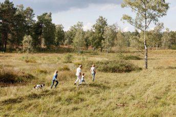 Heinsberg Tourist Servive, Imagemotiv