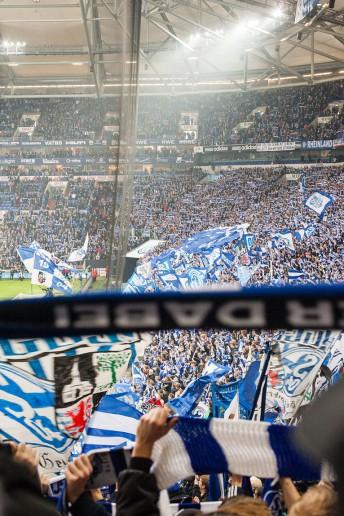 FußballFanFotos, Schalke 04 - Eintracht Frankfurt, Veltins Arena