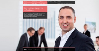 DVI, Website | Power+Radach